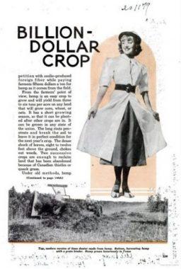 ″new billion dollar crop″