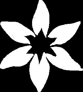 nuntisunya-chanvre-bio-francais