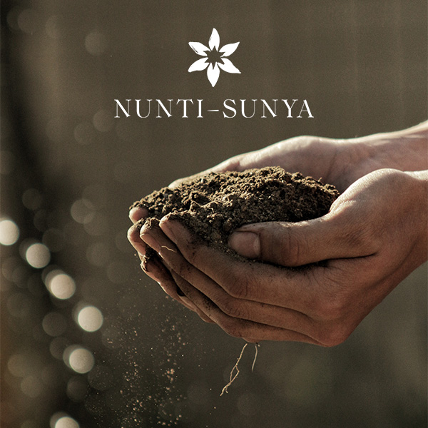 nuntisunya-blog-mot-fondateur-nouvelle-identite-graphique